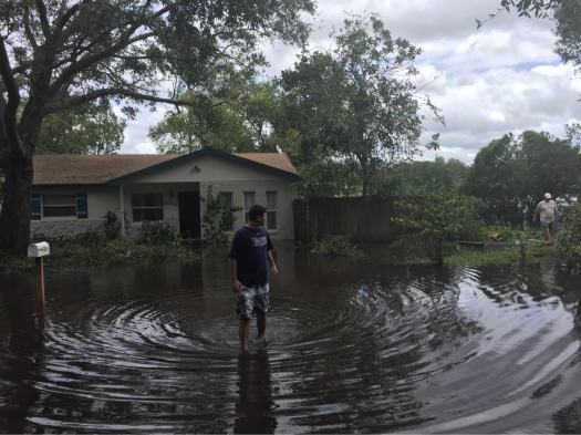 flood, hurricane, Irma, Florida